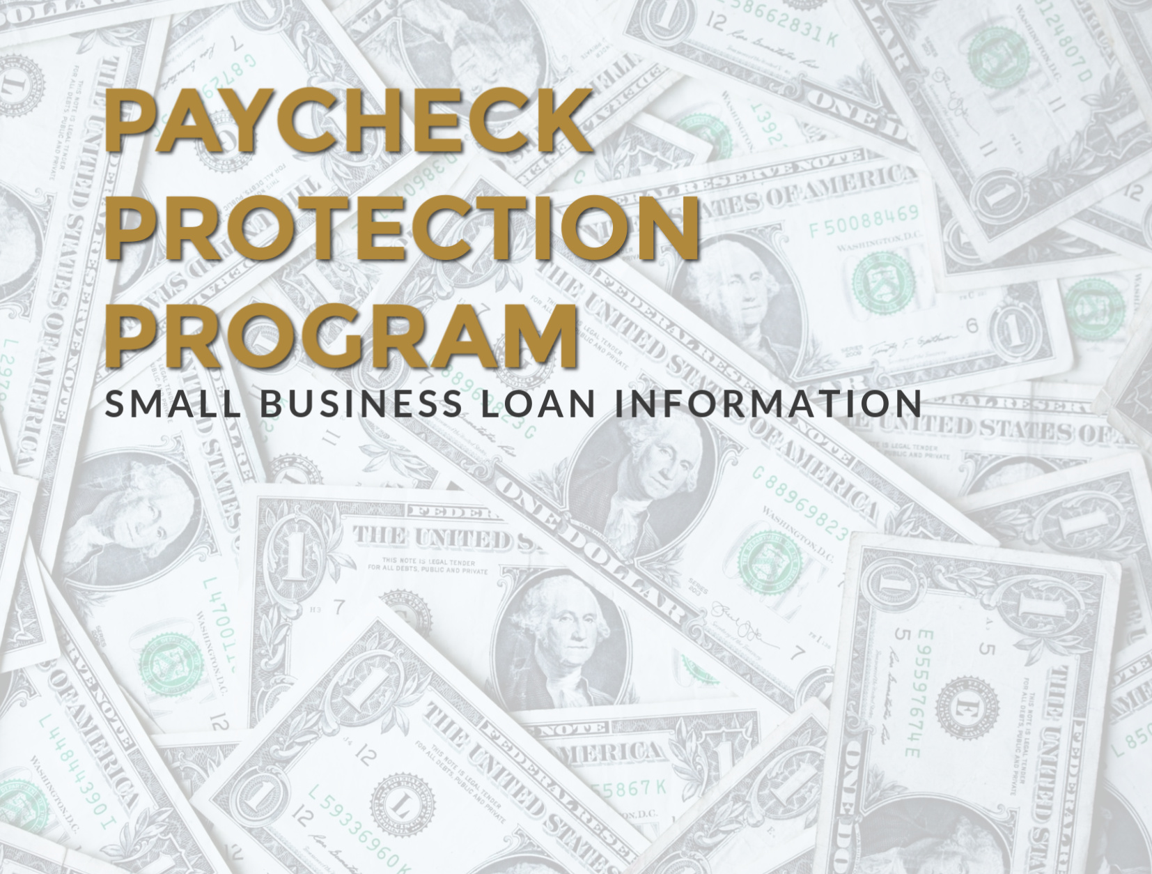 Economic Security For Small Biz Owners and the Self-Employed